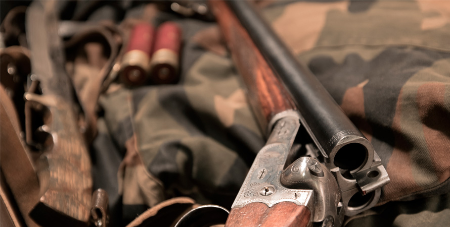 Fucile-Caccia-Tortora