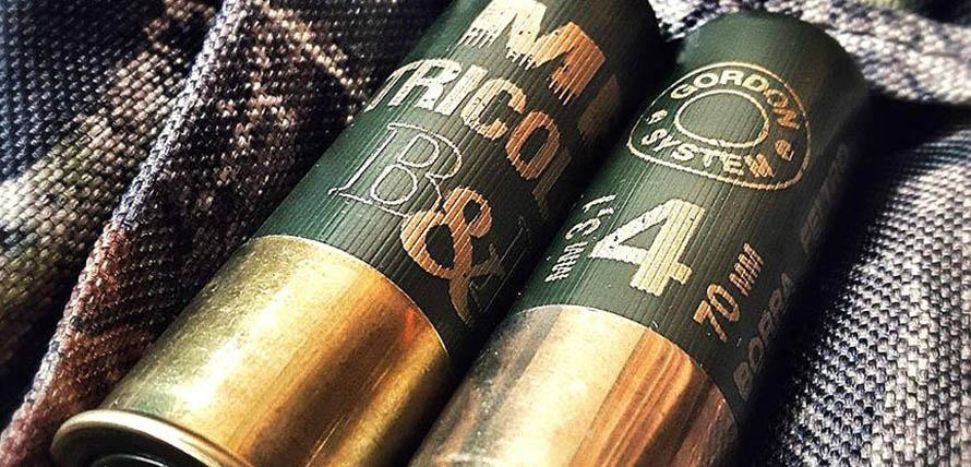 MB-Tricolor-Baschieri-Pellagri-3