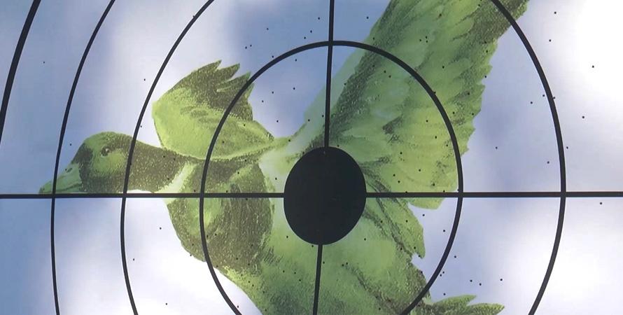 Pattern-Shotgun-Duck-Target-2.jpg