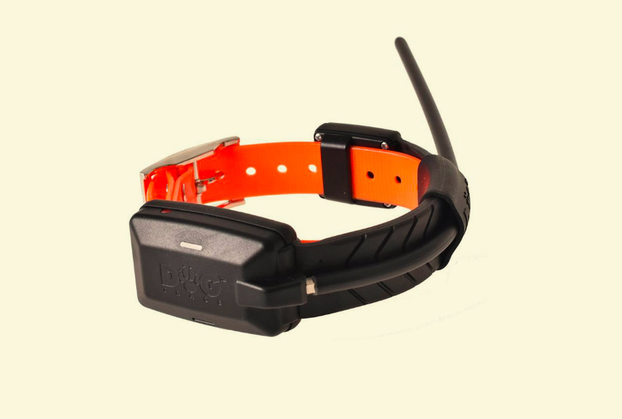 beeper-dogtracex20-1