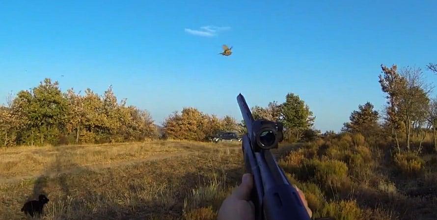 caccia-al-fagiano-fucile-1.jpg