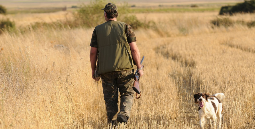 cacciatore-e-cane-da-caccia-campo