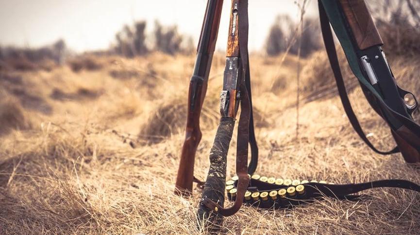 fucili-semiautomatici-2.jpg