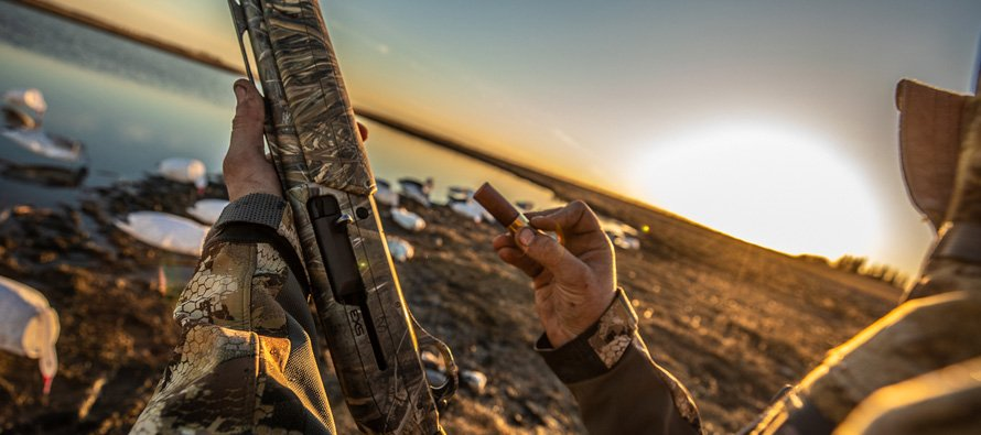 Goose Hunting Waterfowl Season