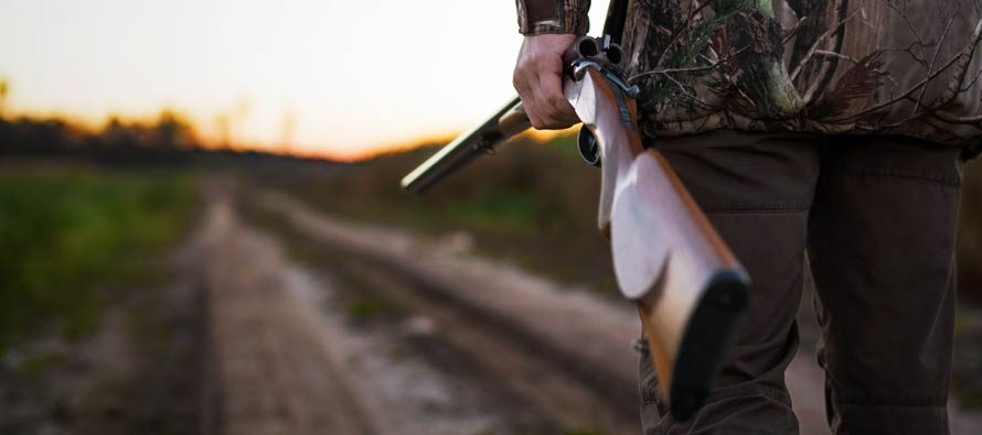 Your first hunting shotgun: top tips to choose it