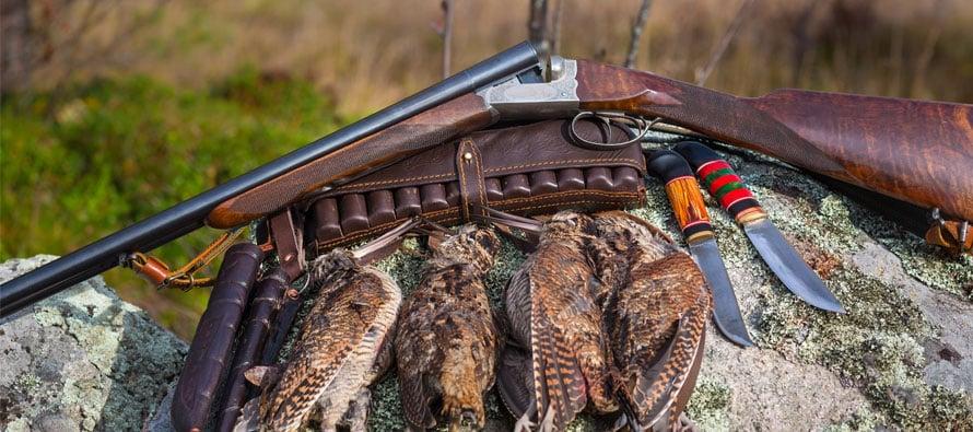 Quali sono i migliori fucili per la caccia alla beccaccia