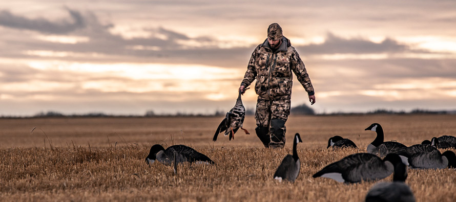 Waterfowl-Hunting-With-B&P-And-Nick-Costas