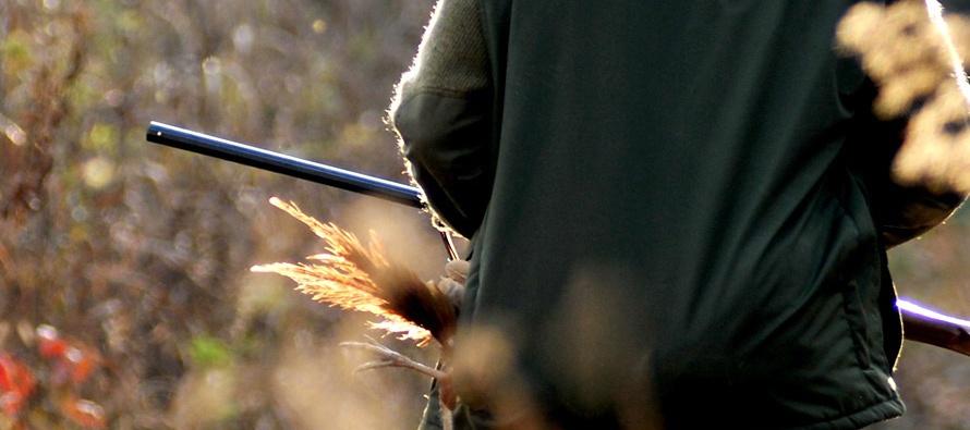 cacciare-il-fagiano-2.jpg