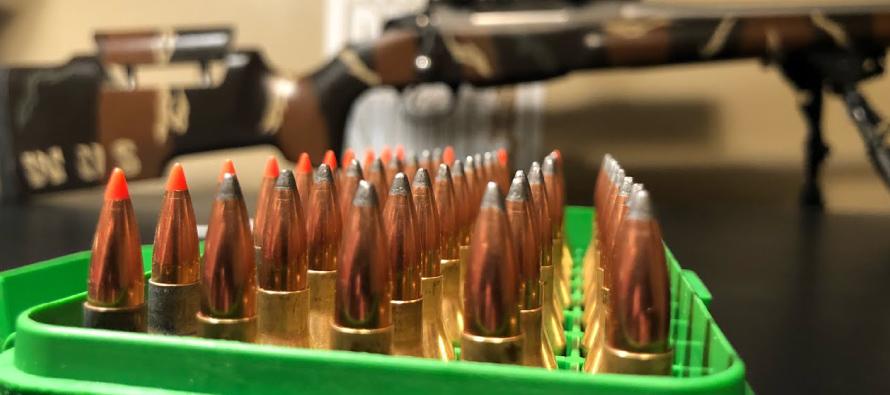 cartuccia-243-Winchester(3)