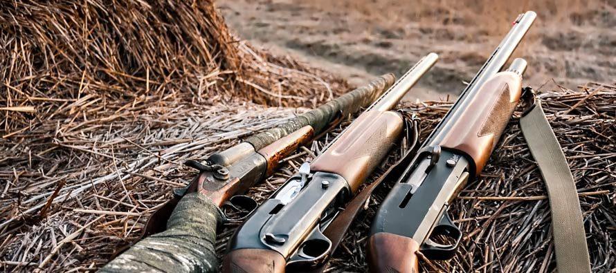 fucili-automatici-e-doppietta-890x395_c-1.jpg
